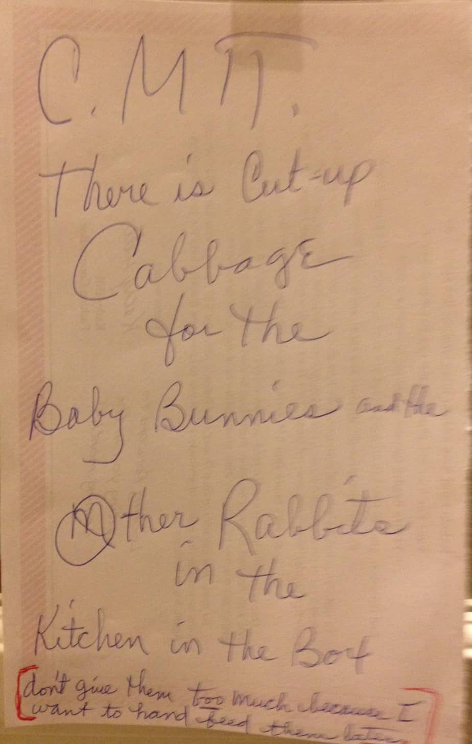MOMS NOTE ABOUT RABBITS (2)