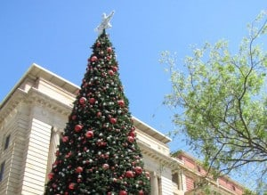 City of Perth Christmas Tree